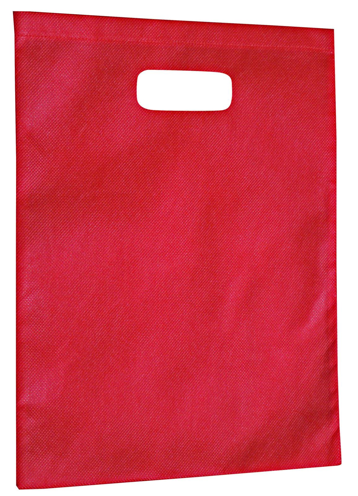 Non-Woven Gift Bag - Large